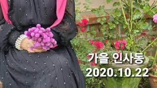 가을인사동!  레트로감성 빈티지정원 부안타샤아저씨 꽃 …