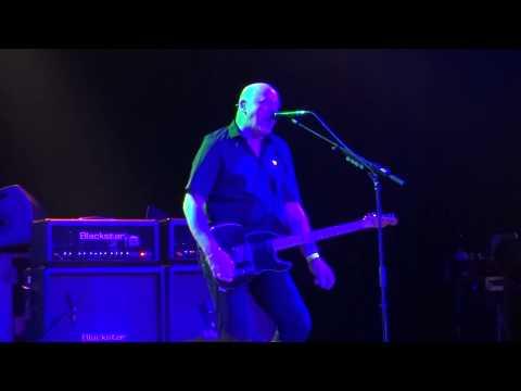 THE STRANGLERS @ REO ROCK, ROESELARE 06 06 15 I FEEL LIKE A WOG
