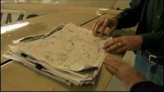 First Migration - Aerial Surveys