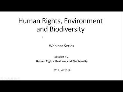 HUMAN RIGHTS AND THE ENVIRONMENT: Webinar #2: Human Rights, Business and Biodiversity