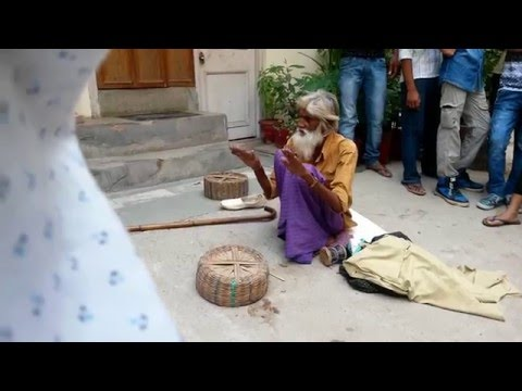 BLACK Magicians of INDIA - amazing real magic INDIA's GOT TA