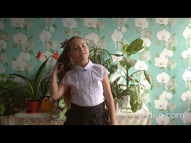Изображение предпросмотра прочтения – ЕкатеринаПерепелица читает произведение «Мирок» М.И.Цветаевой