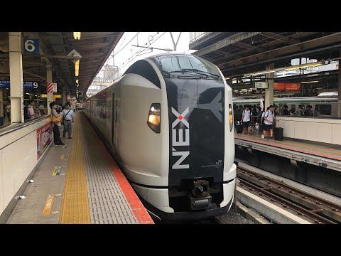 Narita Express N'EX Train From Tokyo Narita Airport To Yokohama