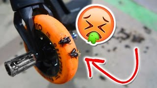 SCOOTER PARK INFESTED WITH GROSS BUGS