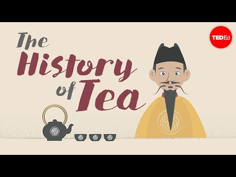 The history of tea  Shunan Teng