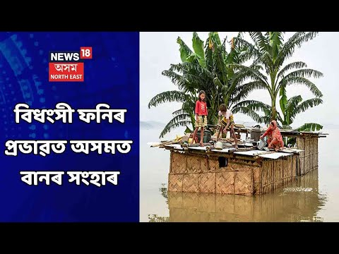 Impact Of Cycone Fani Seen In Assam