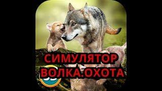 ОХОТА НА ЖИВОТНЫХ В WOLFQUEST / СИМУЛЯТОР ВОЛКА / МЕДВЕДЬ ДЕЛАЕТ ТЕЛЕПОРТ /