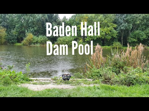 Autumn Carp Fishing Dam Pool Baden Hall Fisheries Day Ticket .  Filling The Gap.