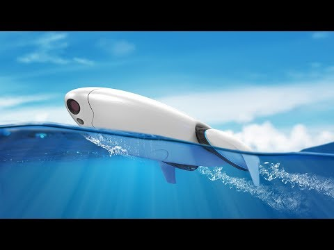 Introducing PowerDolphin, an Intelligent Water Drone