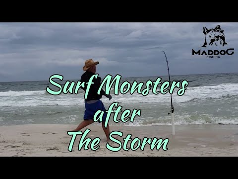 Part 3: Gulf Shores Alabama Surf Fishing (West Pass)