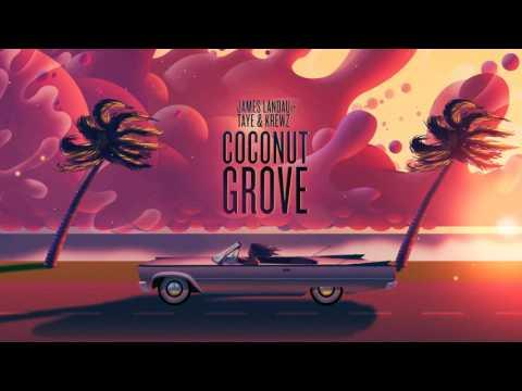 James Landau  Coconut Grove Feat Taye & Krewz