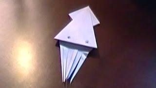 Origami - Squid