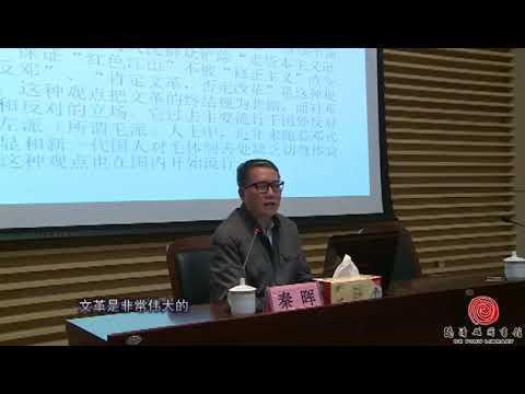 中国大陆禁播系列视频之秦晖:文革中几乎所有当权派都被定性为走资派;毛泽东三年大饥荒饿死了几千万人