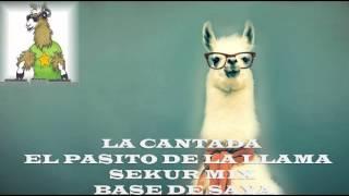 LA CANTADA-EL PASITO DE LA LLAMA SAYA SEKUR Mix