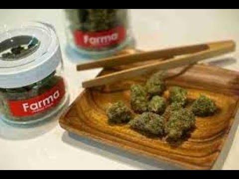 cheap-weed!!!-($4-a-gram-in-portland???)