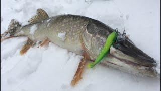 ЗИМНИЙ СПИННИНГ ВЕСНОЙ Рыбалка на МОСКВЕ РЕКЕ в МАРТЕ Ловля ЩУКИ на ДЖИГ