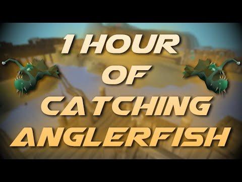 Catching Anglerfish | Testing OSRS Wiki Money Making Methods