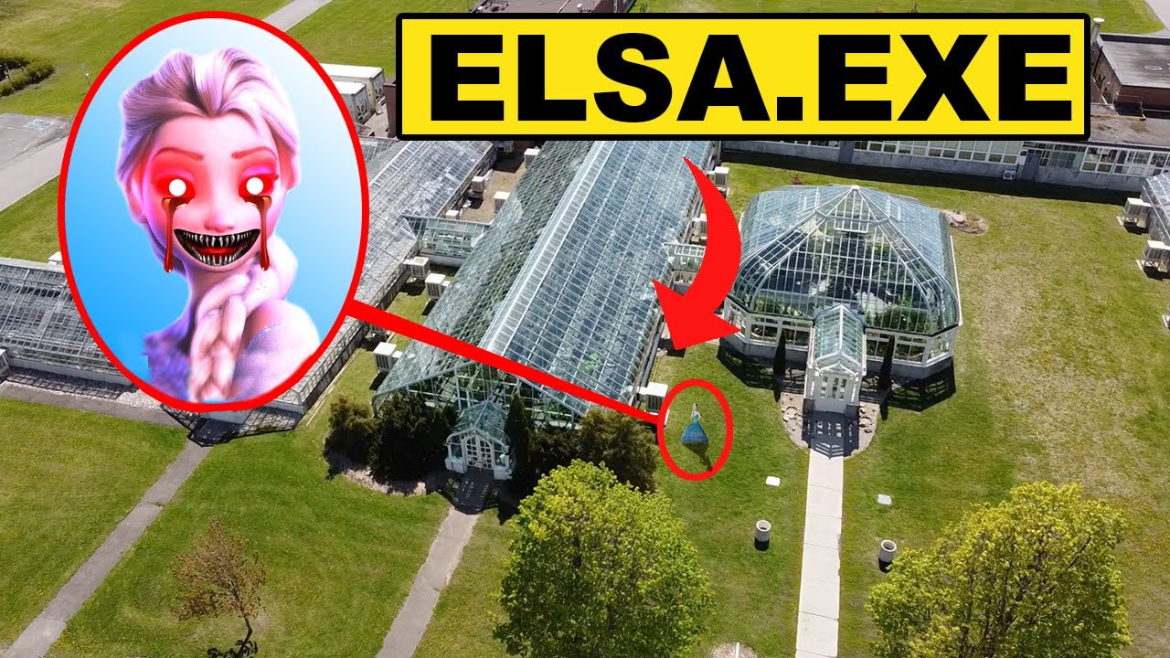 Download DRONE CATCHES ELSA.EXE FROM FROZEN 2 USING HER ICE POWERS IN REAL LIFE !! (ELSE.EXE CAME AFTER US)