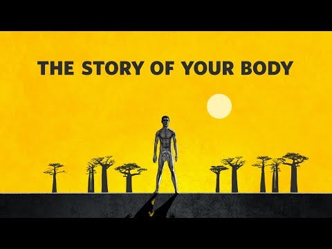 Born to Move - the Story of Your Body