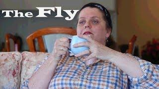 The Fly | Short Scene