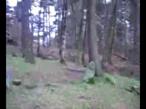 Doll Tor Stone Circle