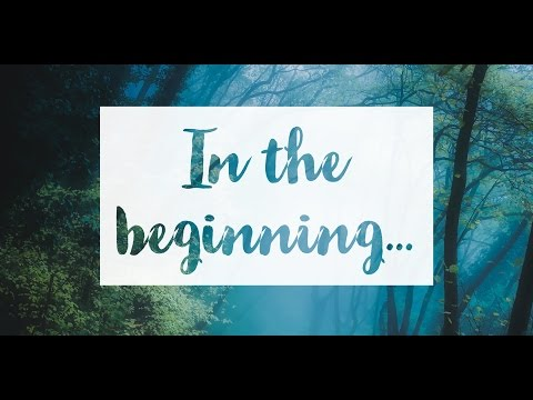 In The Beginning... - CJ Storm
