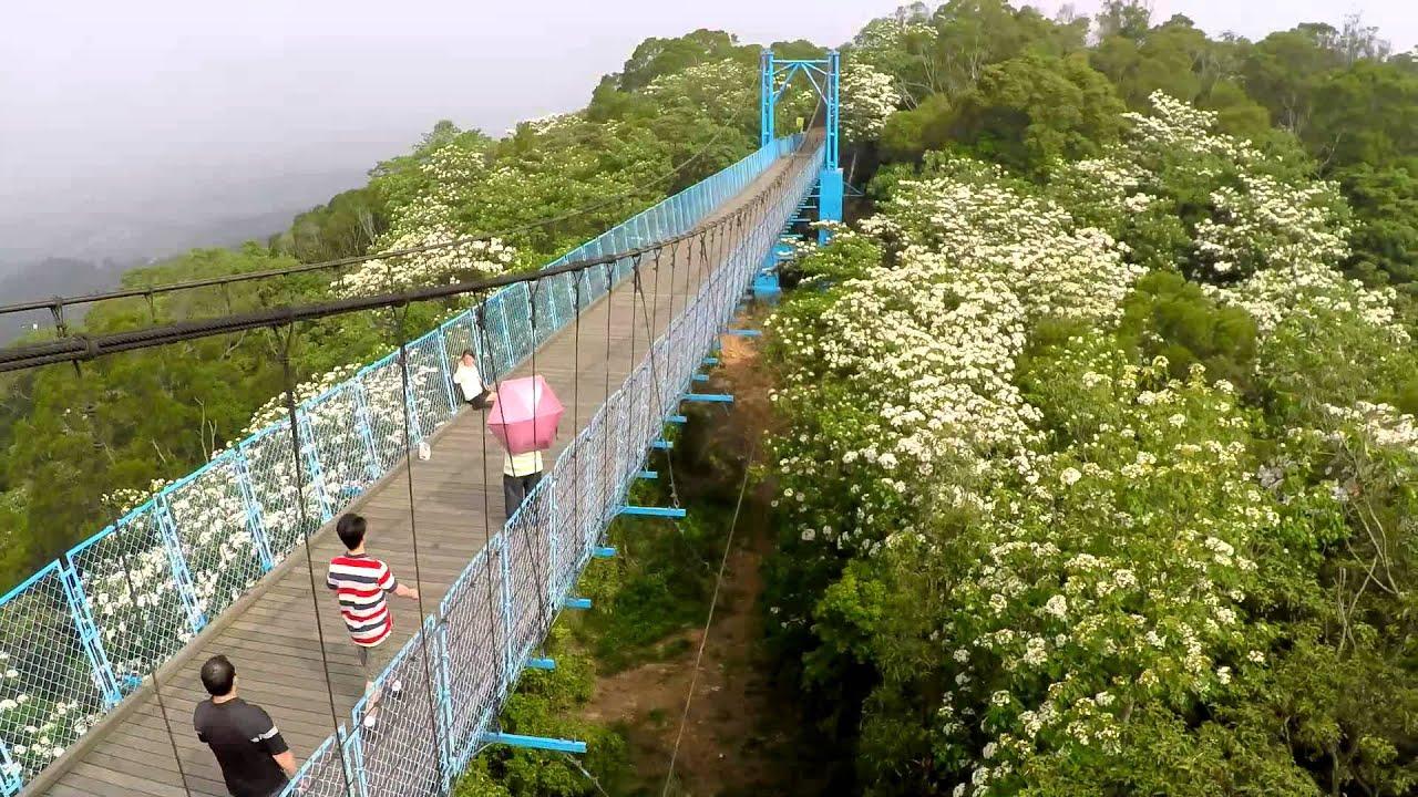 【另個角度。旅行】銅鑼天空步道油桐花盛開空拍 - 首部曲 - YouTube