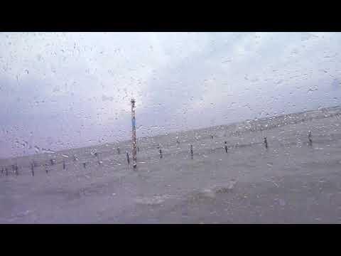 七股潟湖生態遊船龍海號小馬精彩解說107.4.7