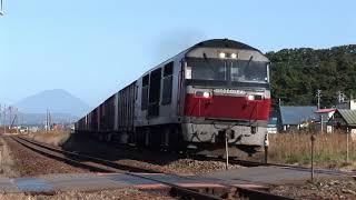 レッドベアーDF200牽引貨物列車 室蘭本線