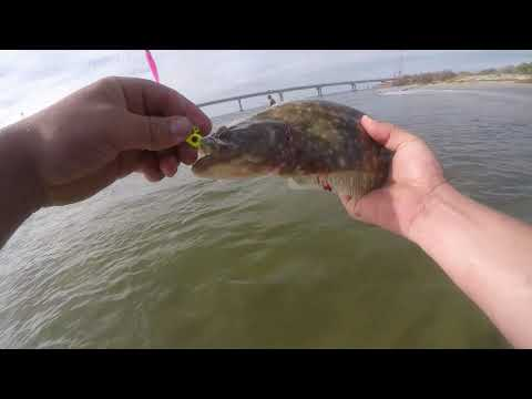 Over Fourty Flounder Caught OBX NC