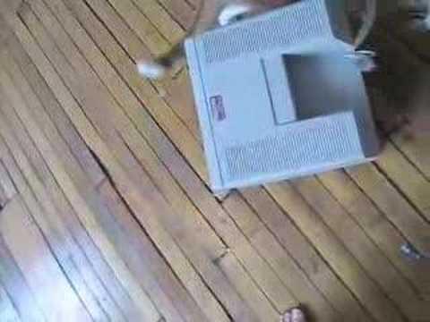 Live Action Roger the Cat vs. Uncle Grandpa Macintosh