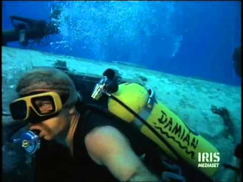 Il cacciatore di squali