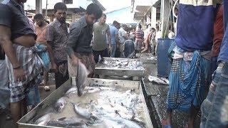 দক্ষিণাঞ্চলের বাজারগুলোতে মাছের তীব্র সংকট | Business News | Somoy TV