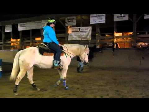 Application for equine affaire 2014 (Adrian and Crystal)-Accepted