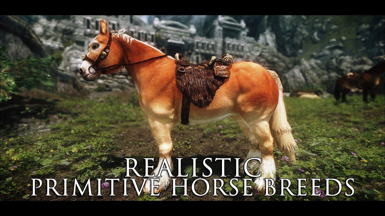 TES V - Skyrim Mods: Realistic Primitive Horse Breeds - 2k