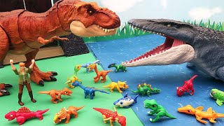 T.Rex VS Mosasaurus - Dinosaur Battle For Kids. Dinos Egg Hatching