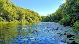 Предвещающее начало Сказочная река Рыбалка на спиннинг на малой реке 2021