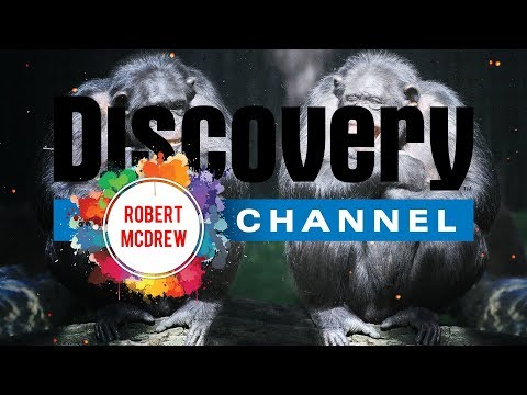 The Bad Touch Robert McDrew Remix