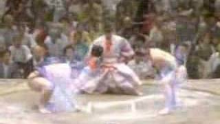 The Real Sumo Fighting 1-8