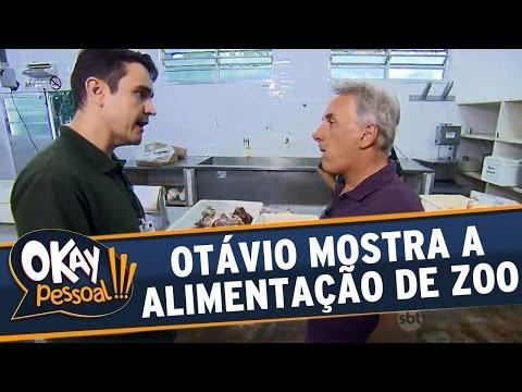 Okay Pessoal!!! (15/04/16) - Otávio Mesquita Mostra Como é A Alimentação Dos Bichos Em Zoo