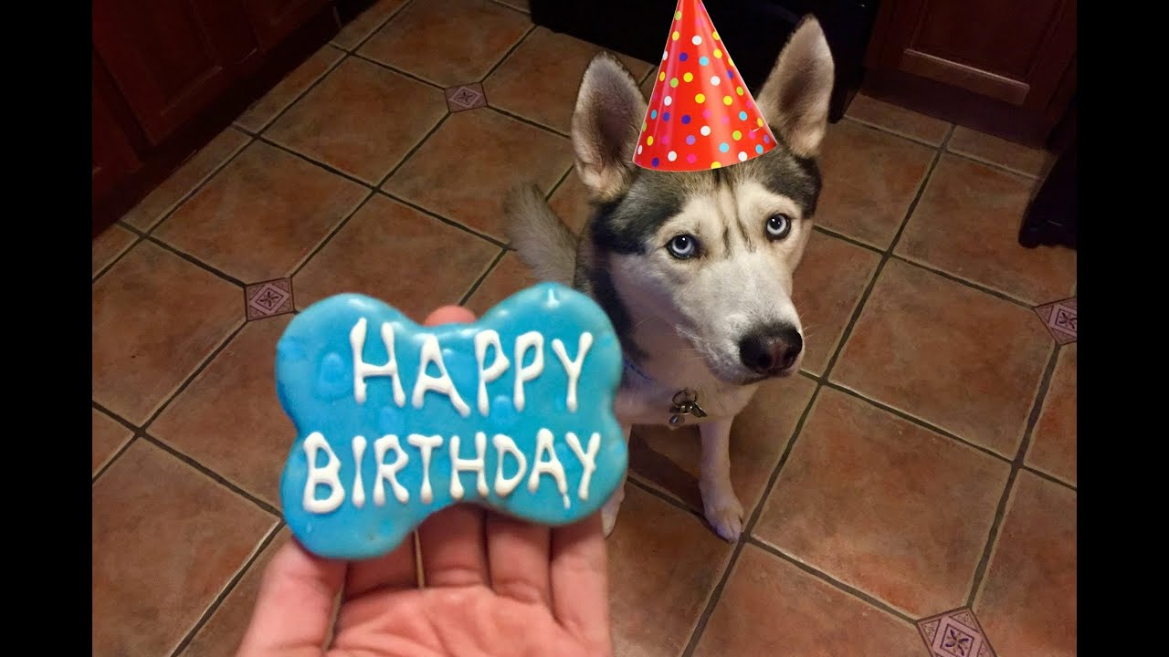 Gohan's 3rd Birthday!!
