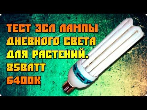 Тест лампы дневного света для растений. 85Ватт 6400к.