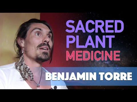 Sacred Plant Medicine with Benjamin Torre