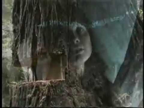 LUNA The Stafford Giant TREE SIT