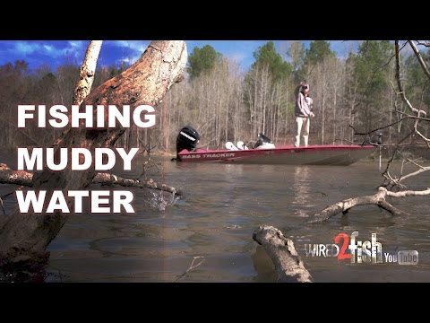 Get Better Bass Fishing In Muddy Water With These Tips