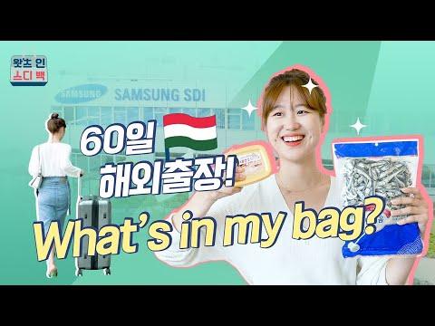 What's In My Bag | 60일짜리 해외출장 가방에는 무엇이 들었을까?