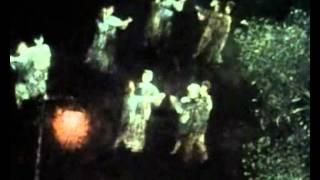 La Nvidia - Der Feuerkreiner
