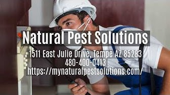 Natural Pest Solutions - Pest Control, Exterminator, & Fumigator Services in Tempe AZ and Phoenix