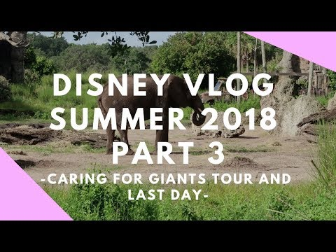 Disney Summer Vlog Part 3 - Caring for Giants Tour and Last Day | DisTech Pro