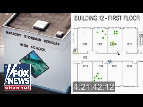 Chilling animation: Parkland shooter's movements in school